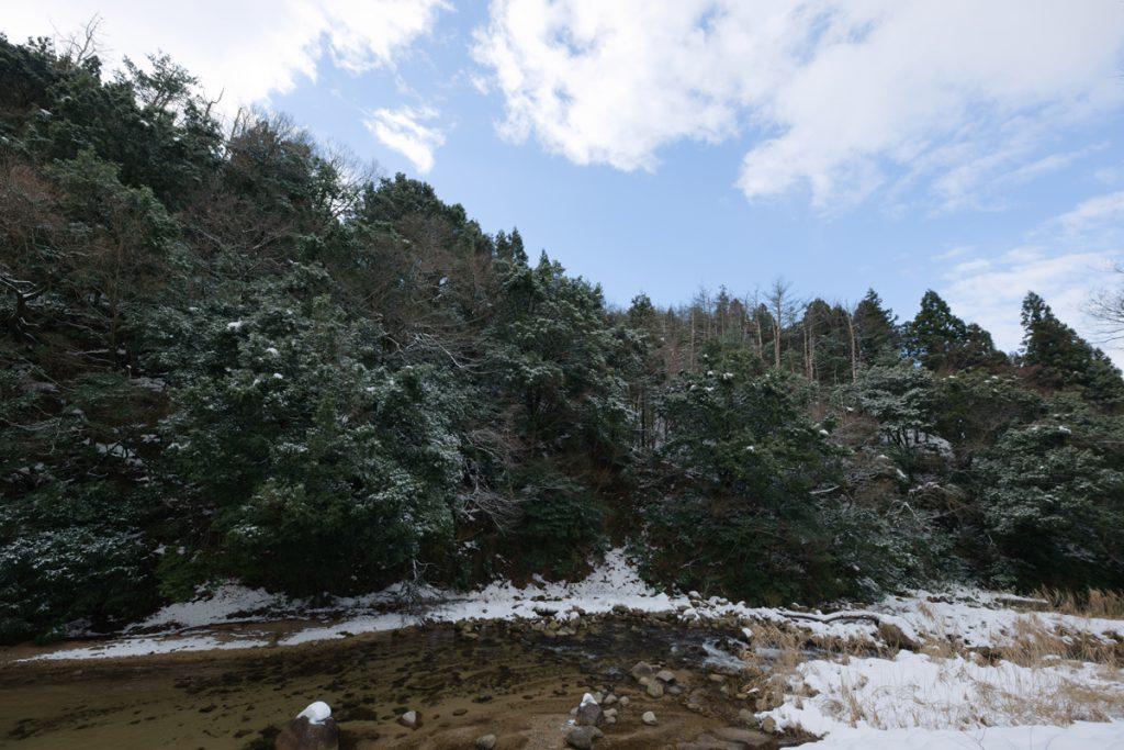 DSC_6459-1024x683 明けましておめでとうございます 五頭山麓いこいの森