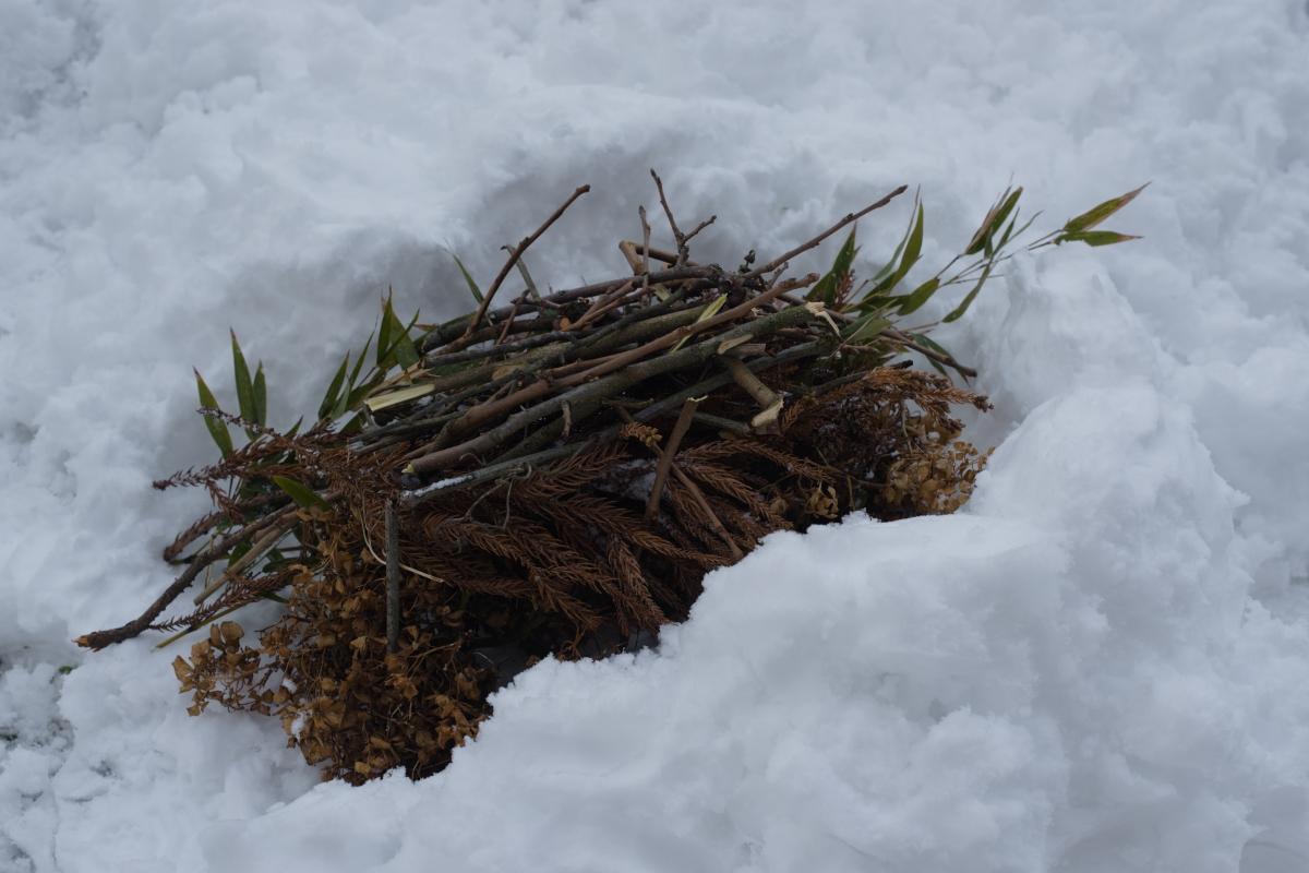 gozu20190126-06 雨でも雪でも特別な道具なしに焚き火をつける方法 五頭山麓いこいの森