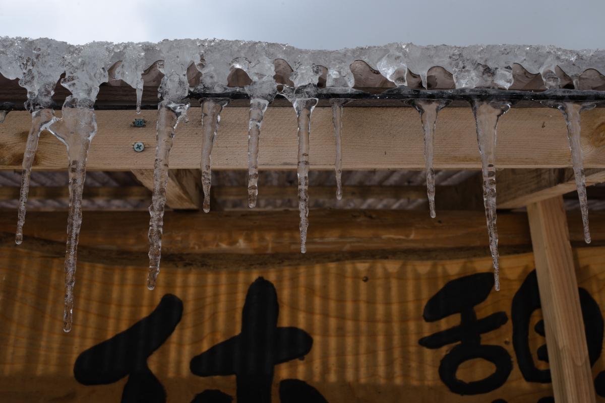 ikoi20190118-02 寒くなってきましたね 五頭山麓いこいの森