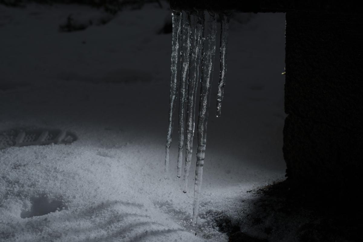 ikoi20190118-14 寒くなってきましたね 五頭山麓いこいの森