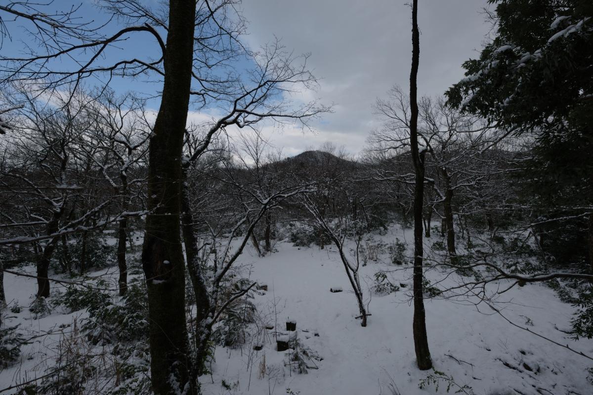 ikoi20190118-17 寒くなってきましたね 五頭山麓いこいの森