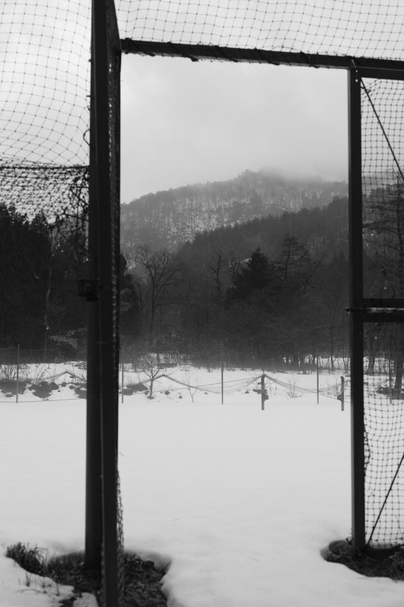 gozu20190220-05 冬なのに雨が降るなんて 五頭山麓いこいの森
