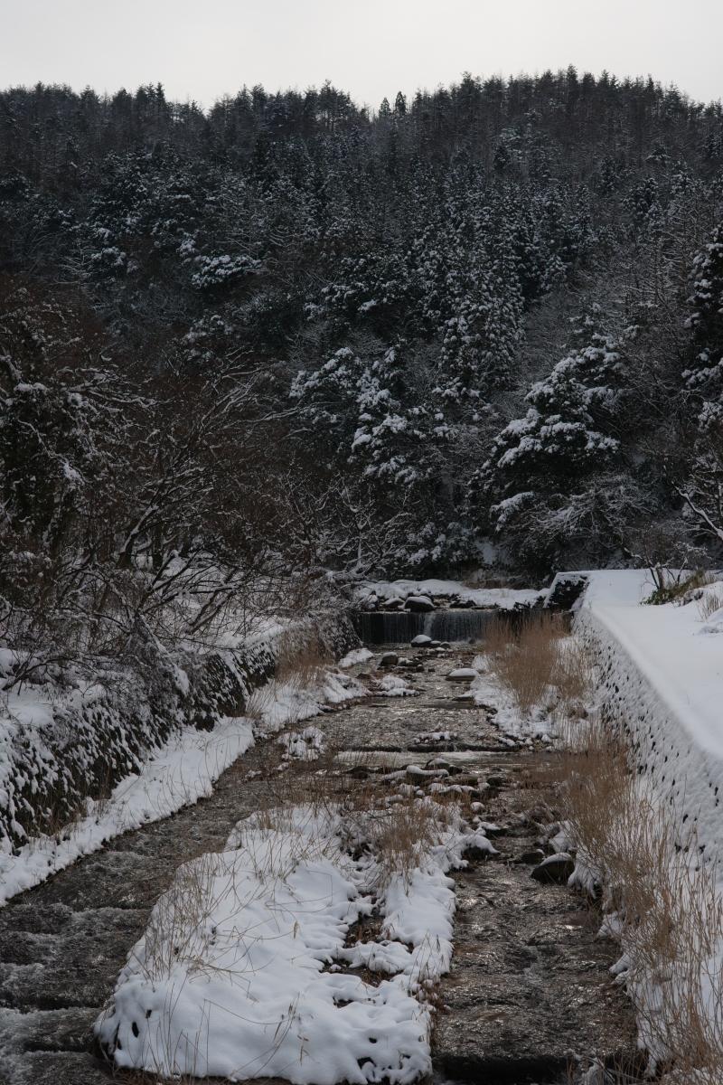 ikoi20190211-03 太陽の出た日は雪が重たい 五頭山麓いこいの森