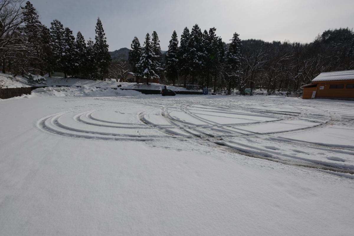 ikoi20190211-10 太陽の出た日は雪が重たい 五頭山麓いこいの森