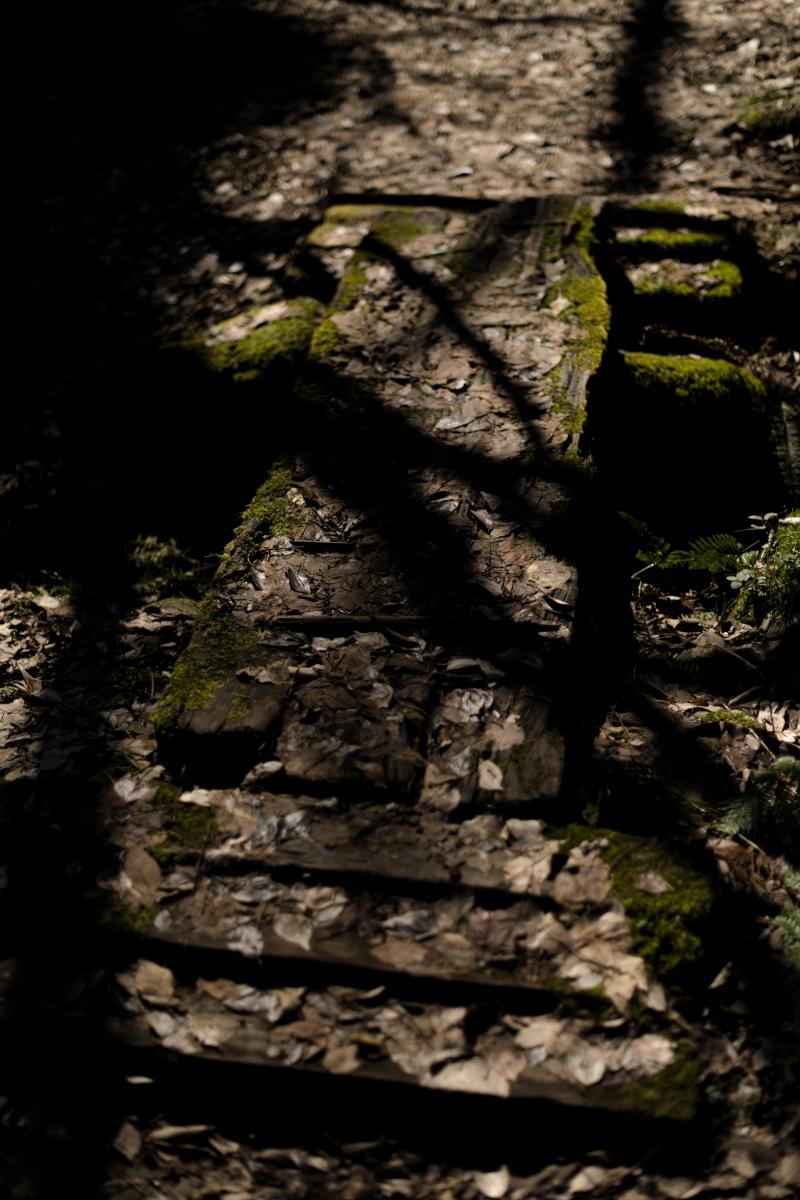gozu20190309-06 散策やキャンプの問い合わせが増えてきた 五頭山麓いこいの森