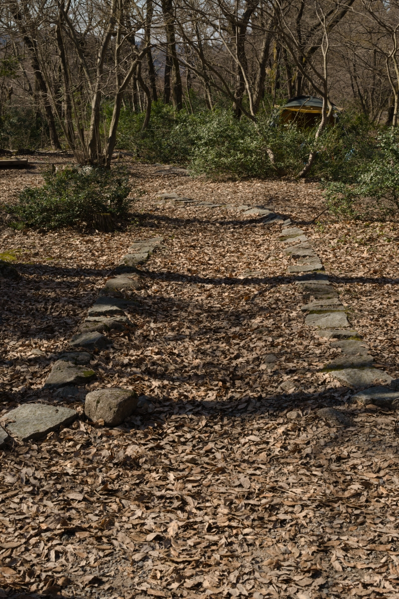 gozu20190309-16 散策やキャンプの問い合わせが増えてきた 五頭山麓いこいの森