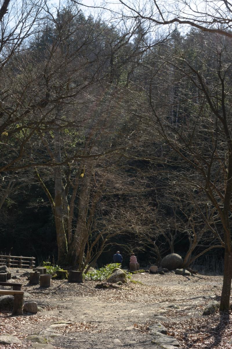 gozu20190309-17 散策やキャンプの問い合わせが増えてきた 五頭山麓いこいの森