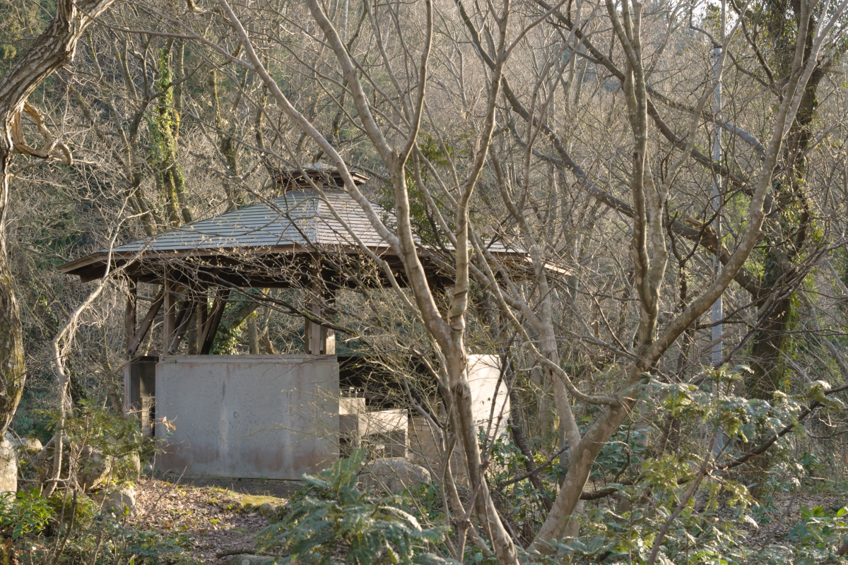 gozu20190312-26 これぐらいのサイズ感です 五頭山麓いこいの森