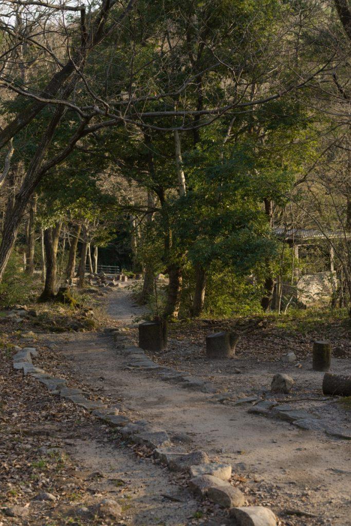 ikoi20190413-11-683x1024 週末はキャンプで楽しもう 五頭山麓いこいの森